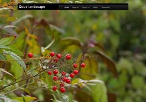 Qdoslandscape Landing Page, by Rinet IT